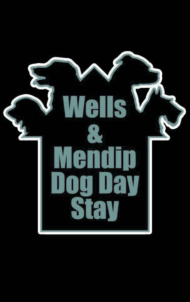 Wells and Mendip Dog Day Stay
